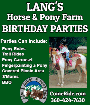Langs Horse And Pony Farm Birthday Guide 2018